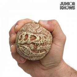 Junior Knows Fossil Ball