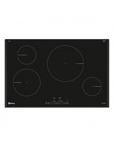 Induction Hot Plate Balay...