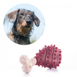 Dog Toy Meat